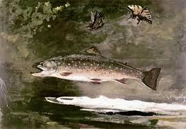 Trout Breaking by Winslow Homer
