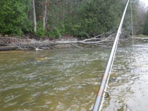 Fishy Run on the Bighead which yielded no steelhead